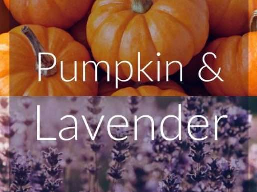 Pumpkin & Lavender